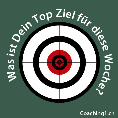 Ziel Coaching