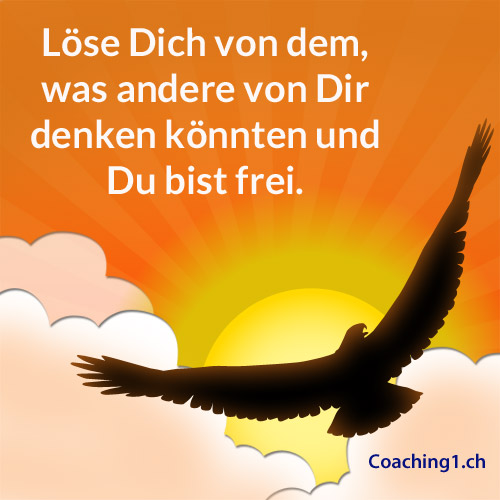 Coaching Loesen